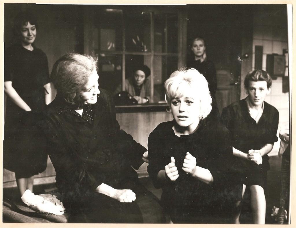 196109 Kattorna (7)