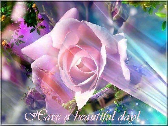Have a beautyful day