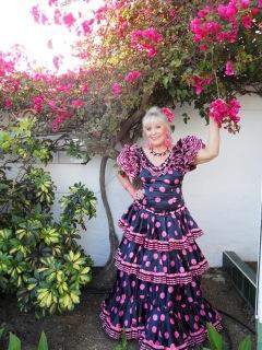 Ch Flamenco bougainvilla