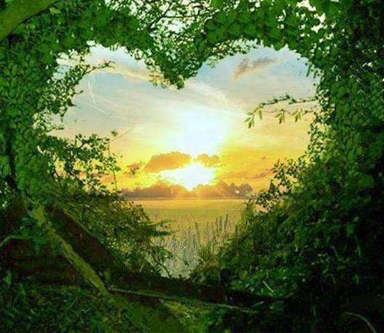Hjärta i naturen